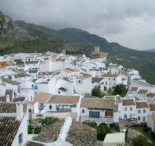 Excursión a Baena y Zuheros (19-04-08)