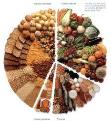 Dieta de Invierno