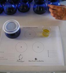 El aceite de oliva virgen extra en el Museo