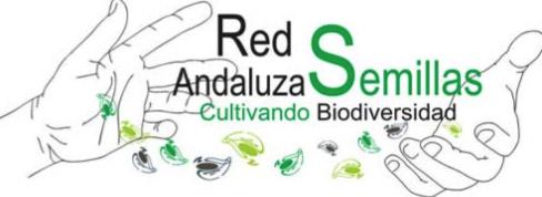 redandaluza-semillas