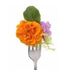 flores_comestibles_